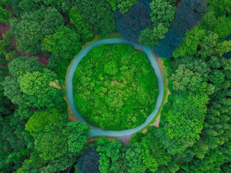 The Circular Economy's potential impact on climate change